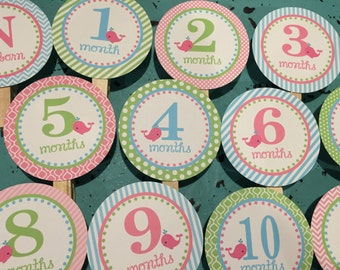 PREPPY WHALE GIRL 1st Birthday Photo Clips Banner Newborn - 12 months  Pink Green Blue
