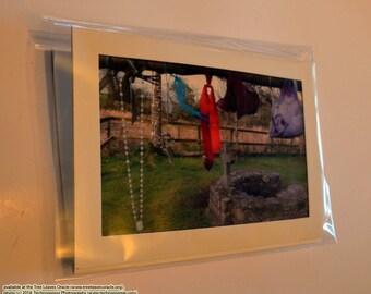 Photo Card: Clootie Tree at St. Brigid's Well, Kildare, Ireland