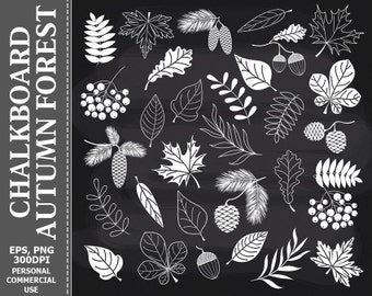 50% OFF SALE Chalkboard Autumn Forest Clip Art - Leaves, Fall, Autumn, Ash berry, Foliage Clip Art