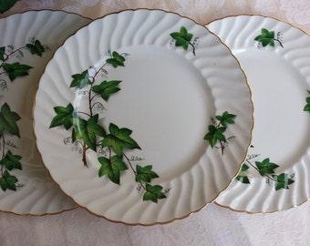 Set of 3 Swinnerton's, Staffordshire, England Dinner Plates, Ivy Pattern, Ironstone, Gold Trim 9 inch