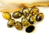 1pc or 5pice set - Natural Baltic Amber cabochon - green - 8x6mm