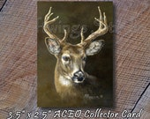 "ACEO ""Whitetail Buck"" - ACEO Wildlife Print - Whitetail Buck Wildlife Print - Miniature Wildlife Print - Deer Print"