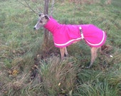 Greyhound raincoat with attached snood.