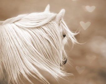 Whimsical wall art, fantasy art, surreal horse photo, magical, nursery art, girls wall decor, sepia, dreamy