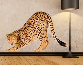 WSD148 - Large cheetah removable wall sticker. animal photo wall decal