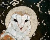 Barn Owl Moon Card / Print Christmas Card