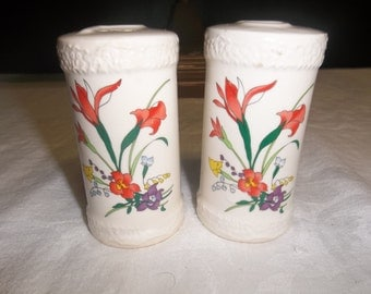 SALE! was 18.00 RARE find Vintage Bird of Paradise Flower Salt and Pepper Shakers, T