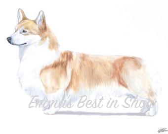 Pembroke Welsh Corgi Dog - Archival Quality Fine Art Print - AKC Best in Show Champion - Breed Standard - Herding Group - Original Art Print
