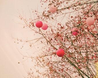 "Paris Photography - pink balloons Paris winter trees romantic art prints valentine decor 8x10 11x14 5x7 paris themed room ""Love in the Air"""