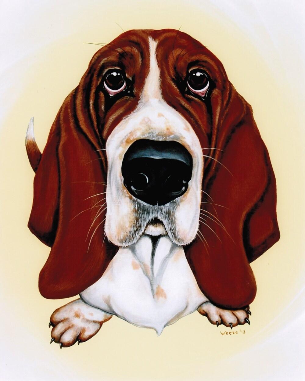 Basset Hound Basset Hound Art Basset Hounds By Artbyweeze