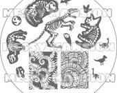 Nail Art Stamping Image Plate MM47 -  Dinosaur Themed