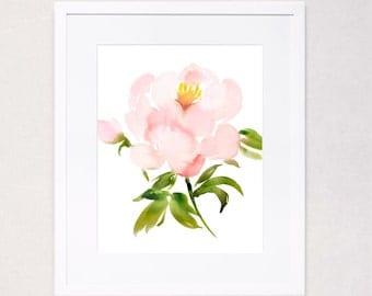 Single Pale Peony Watercolor Art Print