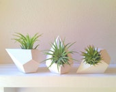 Geometric planter gift, MINI teardrop air plant holders, faceted container