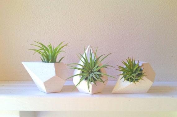 Geometric teardrop air plant holder gift set, mini planters