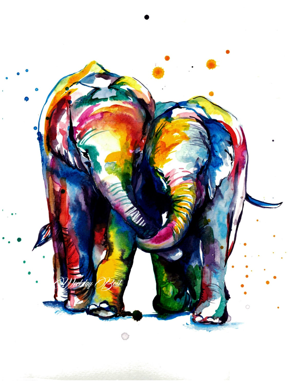 Gallery For gt Colorful Elephant