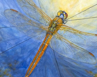 "Dragonfly, ""Here Comes the Sun,"" giclée print of original acrylic painting"