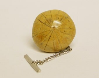 Sand Dollar Fossil Tie Tack No. 1 Free Gift Bag