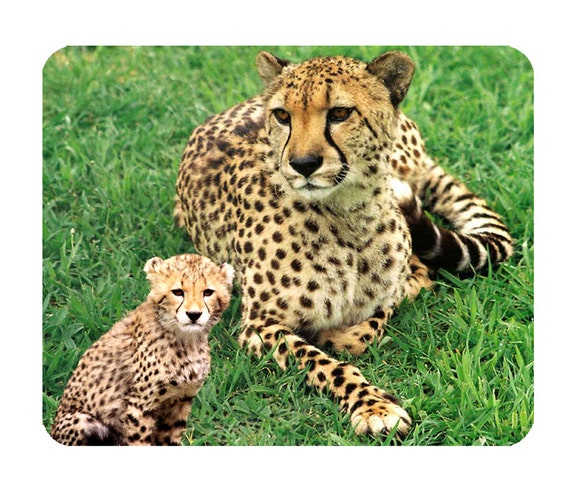 Cheetah Mouse Mat, Mouse Pad