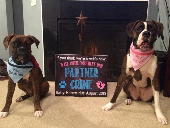 Dog Chalkboard Pregnancy Announcement Pregnancy Reveal
