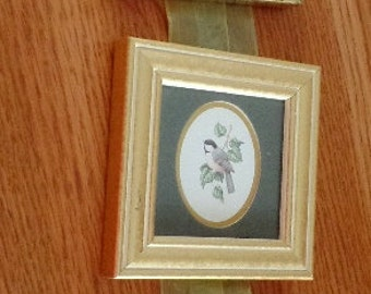3 mini gold frames, with botanical art in each