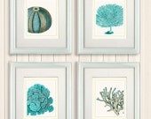 Set of 4 Blue Coral & Sea Urchin Prints - Nautical Print Art Illustration Drawing Poster Digital Print Wall Art Wall Décor Wall Hanging