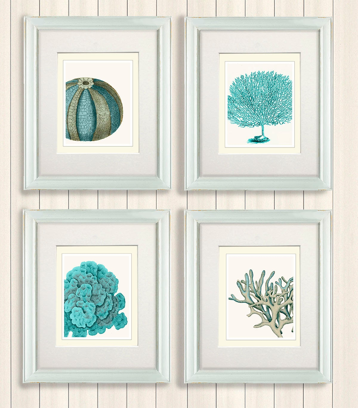 Set of 4 blue coral sea urchin prints nautical by for Bathroom wall mural