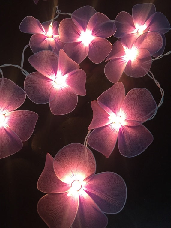 Fairy Lights 20 Purple Color Big Flower Fairy by CottonBallSecret