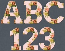 Shabby Vintage Pink Floral Letter Clipart - Pink Rose Alphabet Clip Art, Rose Numbers - Peach Floral Typography - Digital Rose Text Graphics