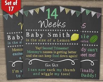 Bi-Weekly Pregnancy Countdown, Chalkboard Pregnancy Countdown Pregnancy Chalkboard Sign, Baby Countdown, Weeks 8-40, Set of 17 Boards