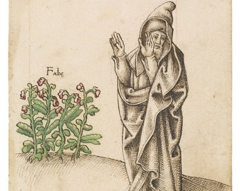 Pythagoras Hates Beans, Funny 16th Century French Drawing Print