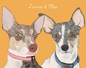 Custom portrait of your 2 pets, digital drawing, colored background, unique gift for birthday,… !