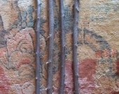 1 Natural Treated Elm Wood Magic Wand Blank with or without Tree Bark