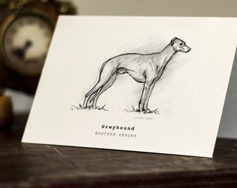 greyhound gift card greyhound cards etsy uk 6337