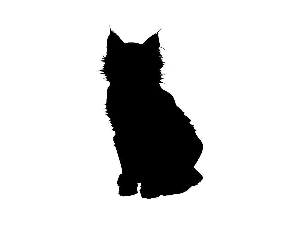 Black Cat Shopper
