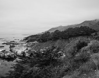 Cali Coast Black and White Photograph Wall Art