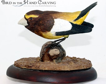 evening grosbeak carving
