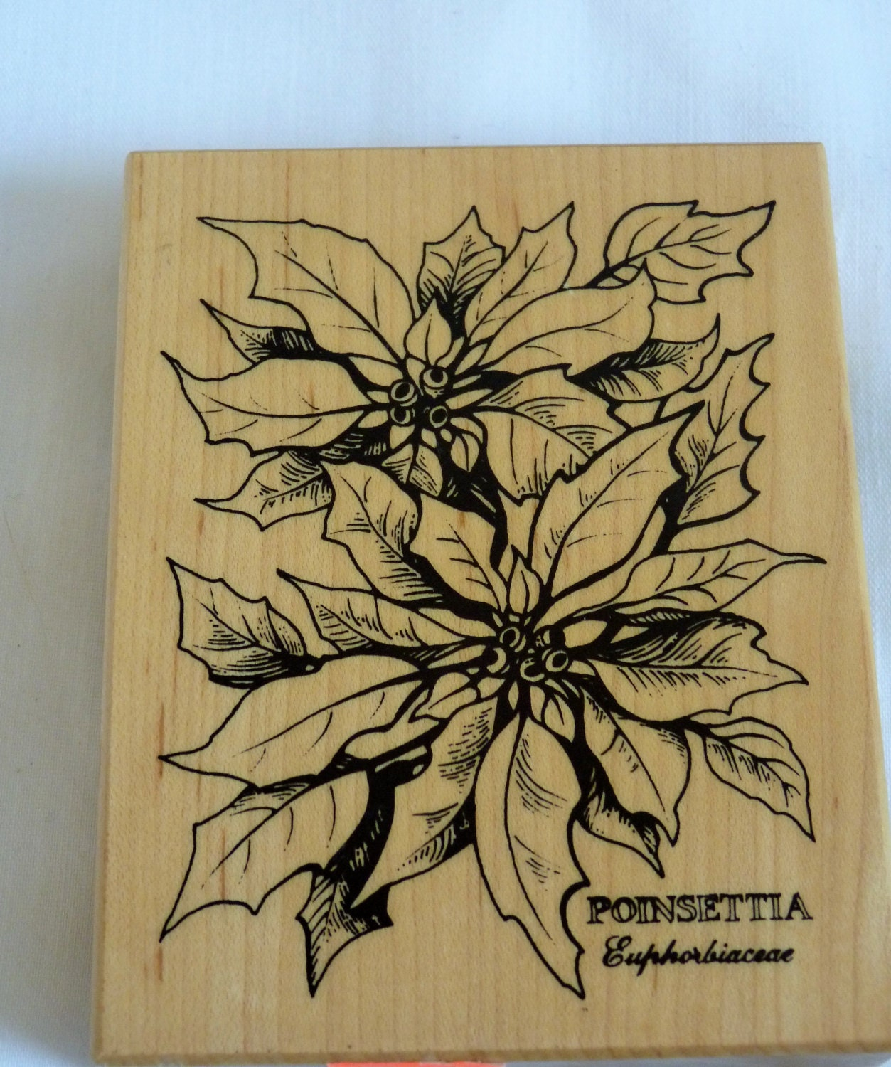 Poinsettia Rubber Stamp Holiday Card Making Rubber Stamp