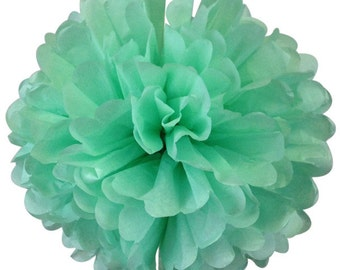 Spearmint Tissue Paper Pom Pom 12inch TPP120114 Just Artifacts Brand