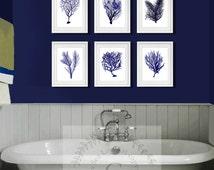Beach Theme Decor Navy Blue Sea Coral Print Set of six 8x10, Coral Wall Art, Coral Print, Gnosis Sealife Art 8x10 Prints