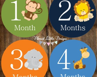 Monthly Baby Stickers Boy, Milestone Stickers, Month Stickers, Baby Month Stickers, Baby Stickers, Jungle #137