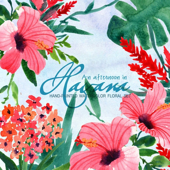 Flowers ,Hand Painted Watercolor Clipart Clip Art -Hibiscus, tropical plants