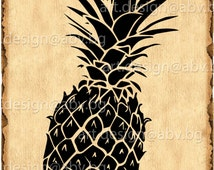 Vector ANANAS, fruit, pineapple, Download, Digital image, graphical, AI, png, eps, pdf, svg, jpg, discount coupons