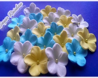 20 Edible glossy sugar flowers blossoms blooms cake cupcake decorations yellow blue white