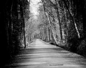 Lonely Lane   - Black & White  Fine art print