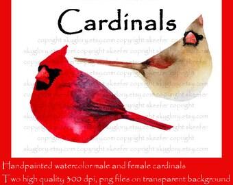 Cardinal clipart | Etsy