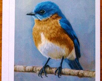 Eastern Bluebird - bird notecard - bird art - greeting cards - paper goods - thank you notes