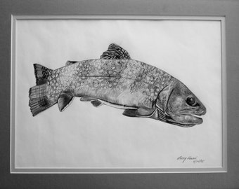 Fish, Brook Trout black and white print