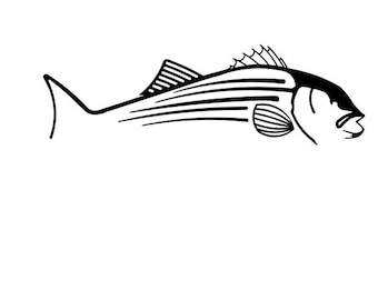 Striped Bass vinyl decal