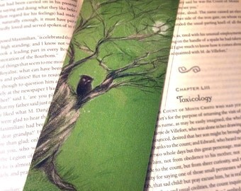 Night Owl, Bookmarks, Laminated, Colored Pencil, Illustrations