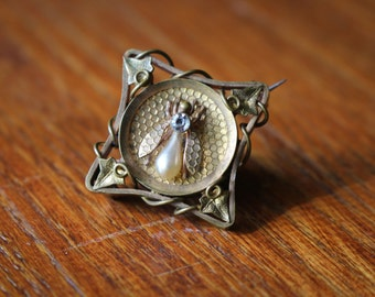Beautiful 1800s Insect Brooch